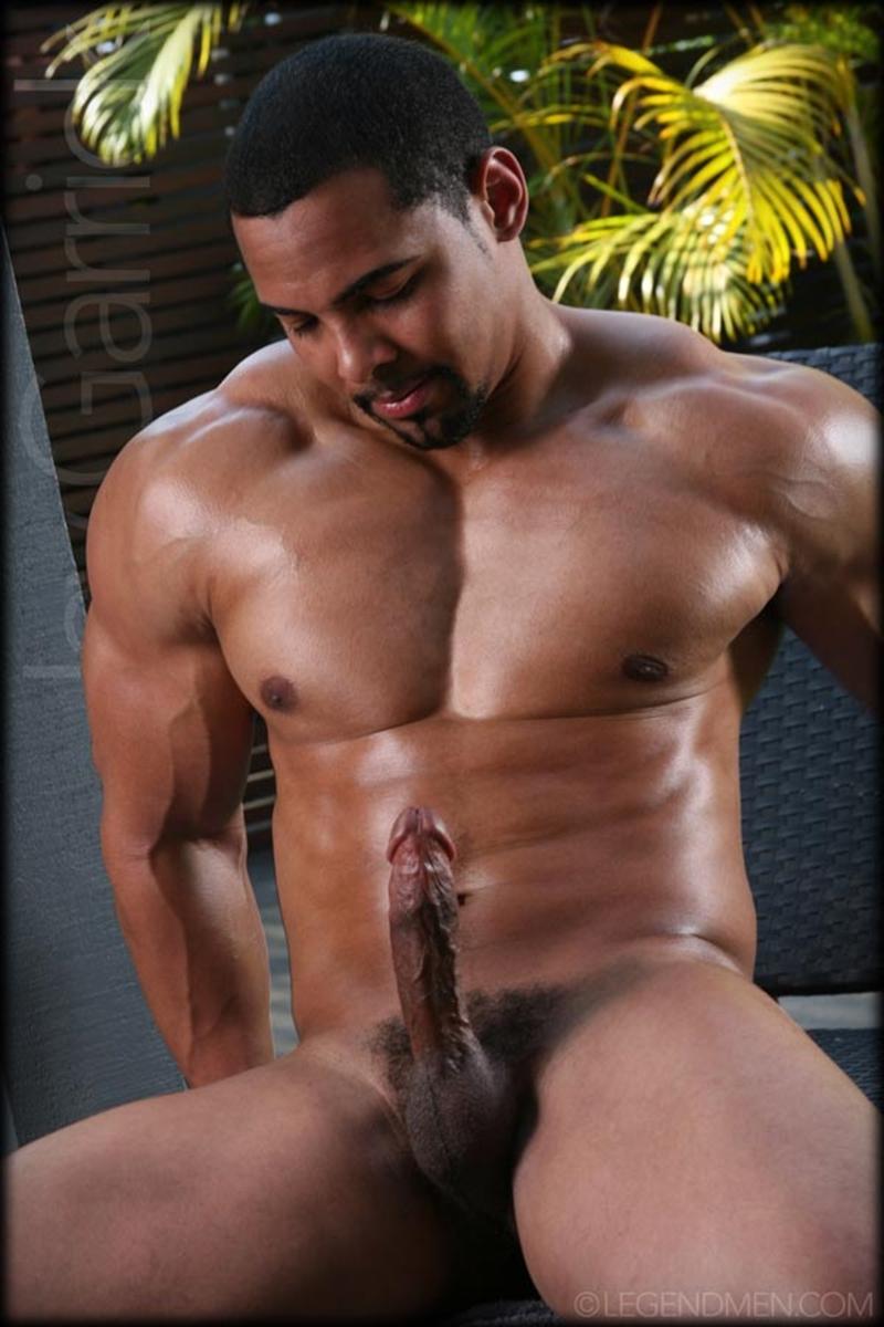 big black muscle bull