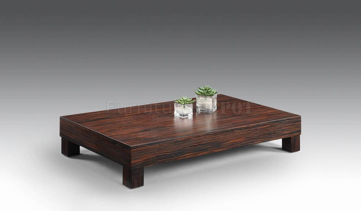 Splendid Table Low Coffee Tables Home Interior Design Drawers Low Coffee Table Wayfair Low Coffee Tables Low Coffee Table houzz-02 Low Coffee Table