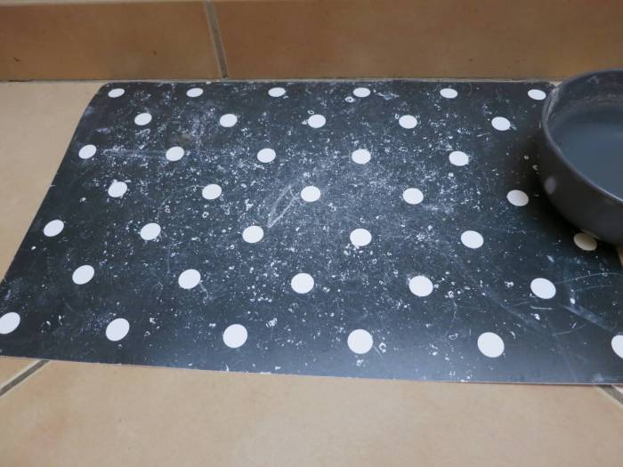Pet Fusion Silcone Food Mat