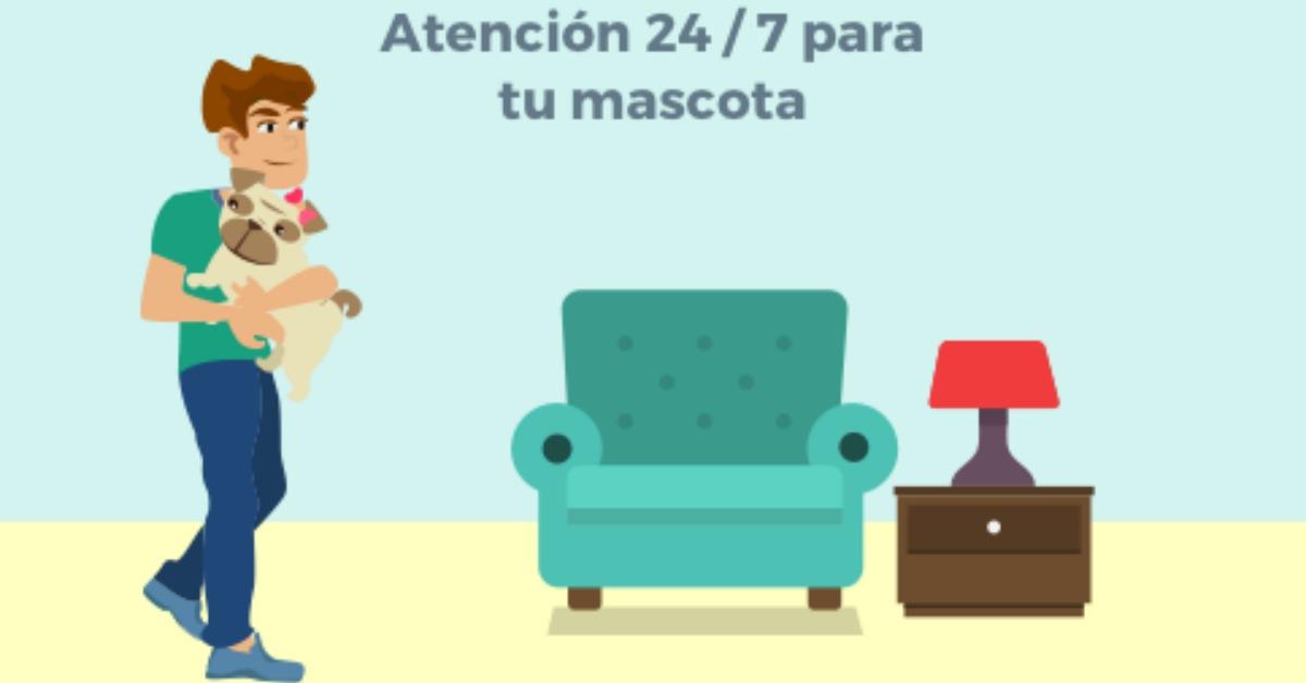 México – Para mascotas también hay una red social de cuidados