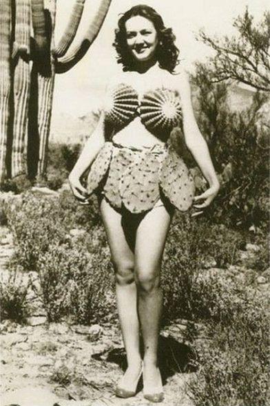 bikini cactus