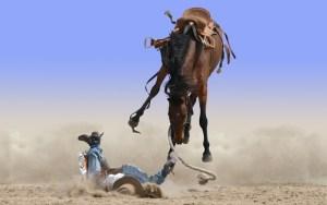 horsefall