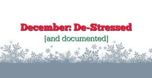 December De-Stressed and Documented 4th Prompt