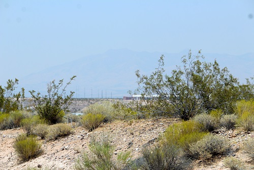 Photo taken on Friday, June 24 at approximately 2:30 p.m. from the Beaver Dam Exit.  The mountains just barely visible in the background are the mountains leading into the Virgin River Gorge just two miles away.  Photo by Teri Nehrenz
