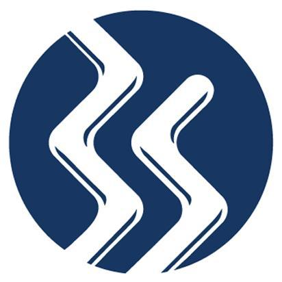 Binary Stream - Logo