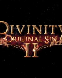 Divinity Original Sin 2 early access