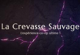 crevasse-sauvage-dans-black-desert-online