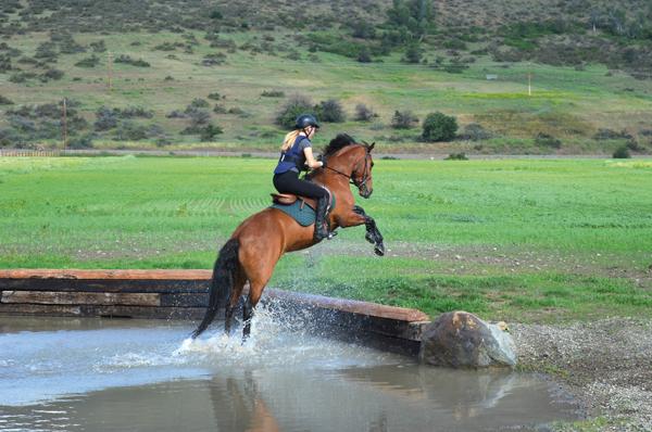 sports-equestrian-p