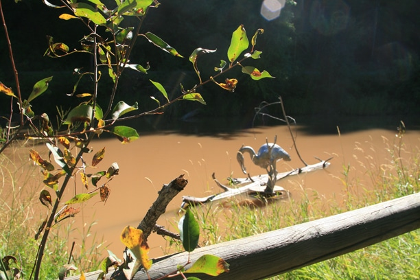 Among the art installed at the Twisp Ponds is this cast aluminum heron by Cordi Blackburn, seen here knee deep in the big muddy that resulted from last week's thunderous rainstorms. Photo by Ann McCreary