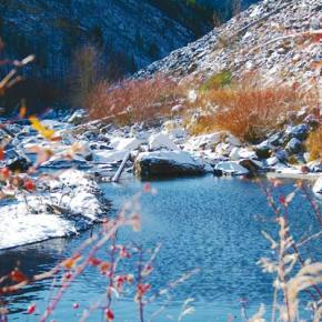 Photo by Darla HusseyThe Chewuch River near the Thirtymile Trailhead on Nov. 11, 2015 was a contrast between the brilliant colors of fall and the stark light and shadow of looming winter.