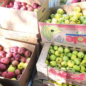 Comment on permits for fruit-packing industry
