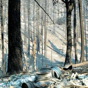 Help is available to reduce erosion on burned properties