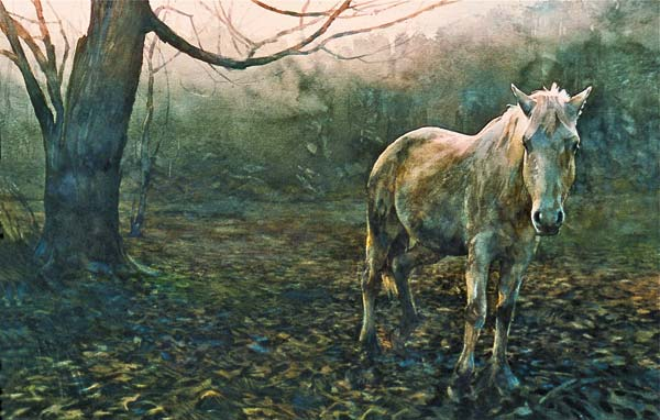 Photo courtesy of Confluence Gallery In Stan Miller's workshop, water color artists will have the opportunity to hone their animal painting skills.