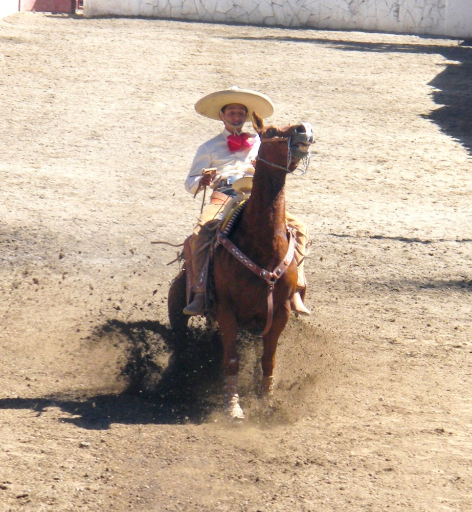Charros... Mexican Cowboys (1/4)