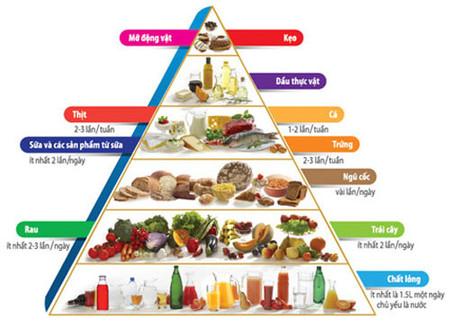 Tháp dinh dưỡng cho trẻ từ 6 tháng - 1 tuổi