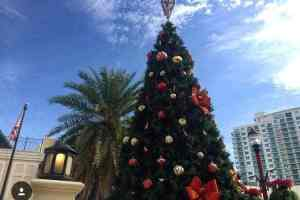 CocoWalk tree lighting, village and toy drive