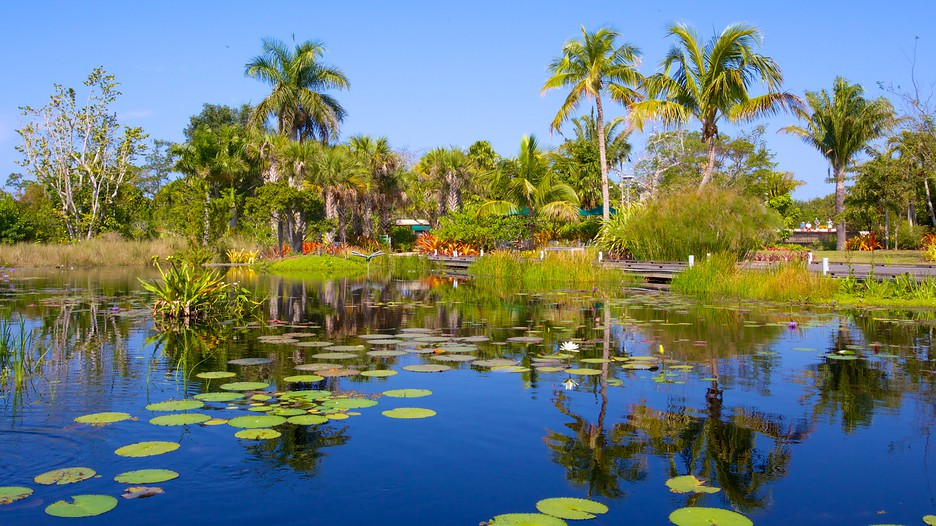 Naples-Botanical-Garden-Miami-Tips