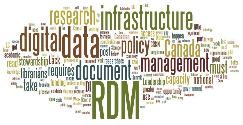 Research Data Management Highlights: Digital Infrastructure Summary Summit 2014 Summary Document