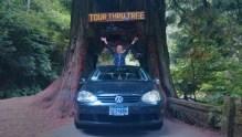 Drive Thru Tree, Klamath, CA