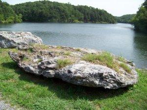 A big rock near a small lake in Bella Vista, Arkansas. (Taken July 2009)