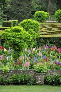 1-garden-maze