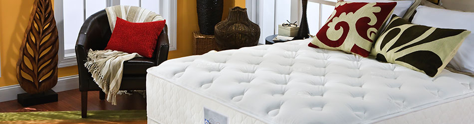 A Sealy Mattress From Baumgartneru0027s Furniture.
