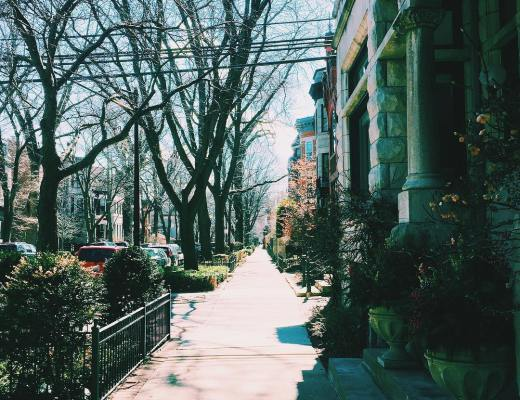 Chicago in the Springtime | Link Love