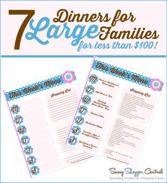 Budget Friendly Meals for large families