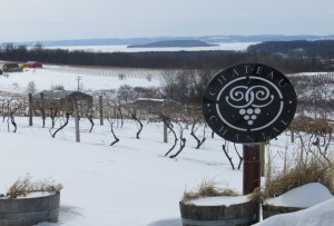 Chateau Chantal's Old Mission Peninsula lies buried under several feet of late February.  In the background, the West Arm of Grand Traverse Bays is completely frozen.