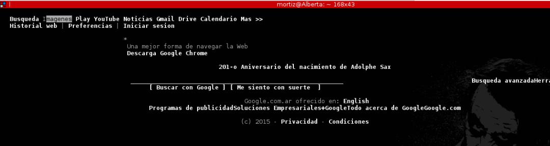 Navegador web - Solo texto