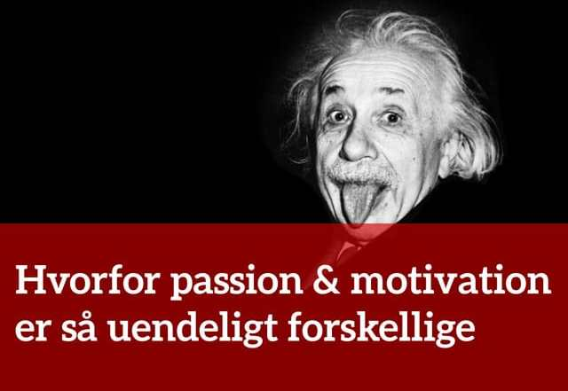 Hvorfor passion & motivation er så uendeligt forskellige