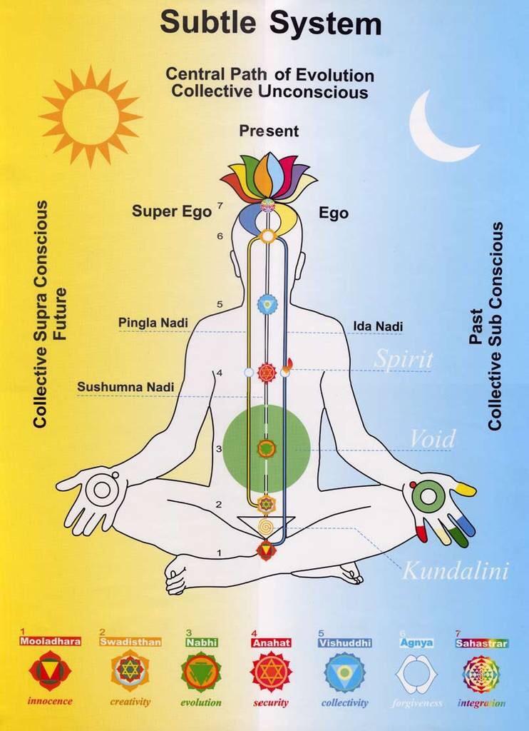 Sistema dei canali energetici (dove passa la Kundalini) con i 7 chakra