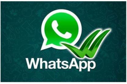 Huduma hiyo inapatikana kupitia Whatsapp katika simu zote za