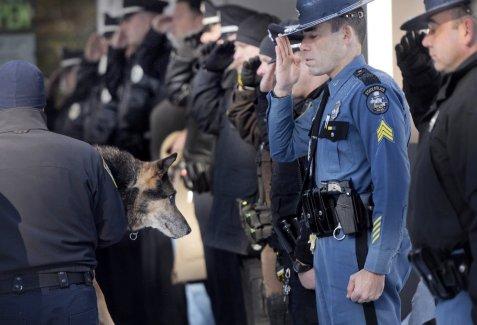police-dog-sultan2