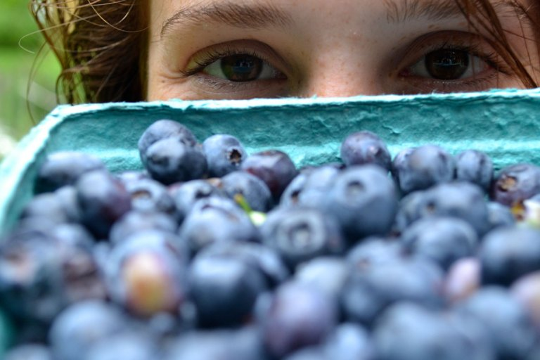 Blueberries are Millennial's pick for fresh fruit of the day.