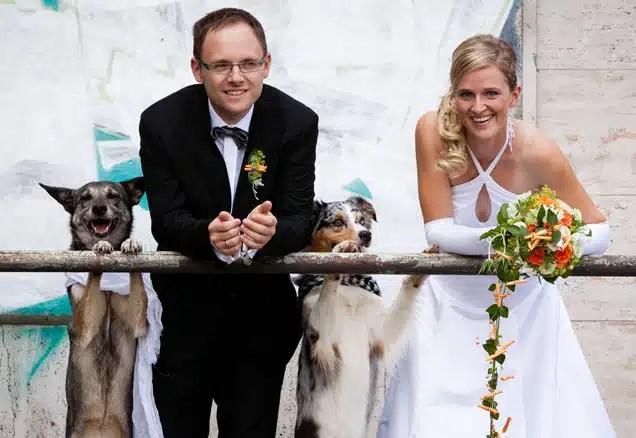 Pets in Weddings- Millennial Magazine