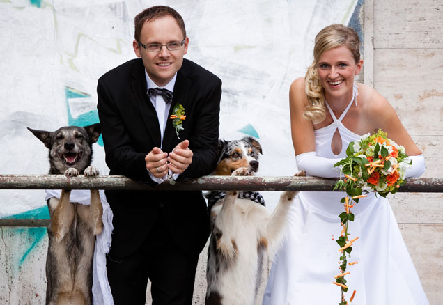 Pets in Weddings- Millennial Magazine