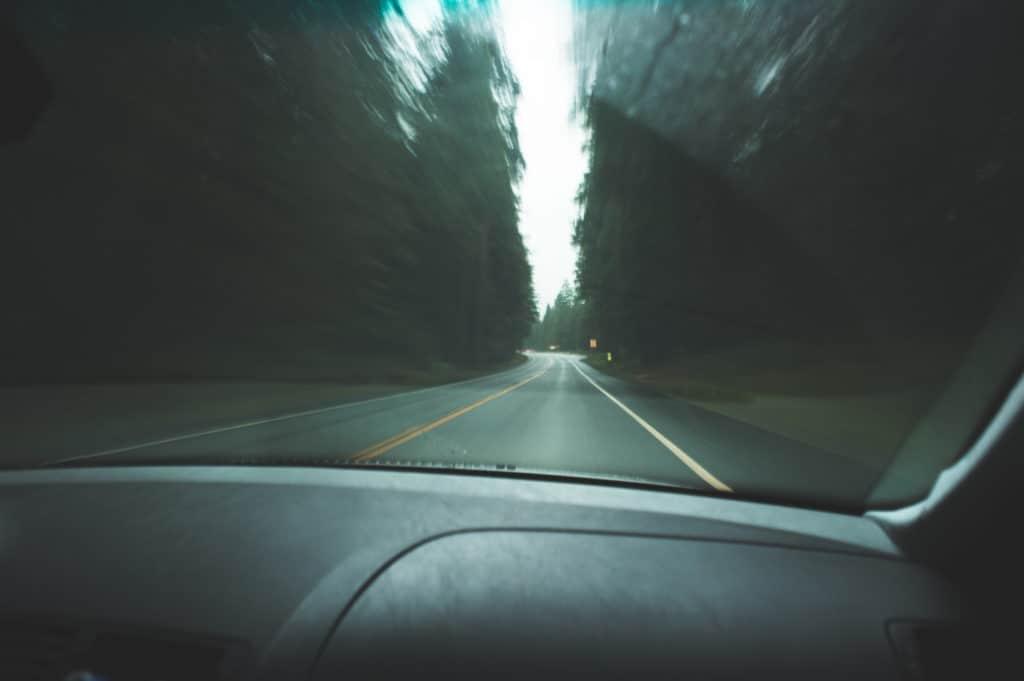 driving, wilderness, park