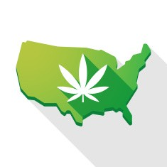 stock-illustration-56802646-usa-map-icon-with-a-marijuana-leaf