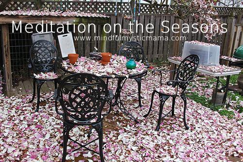 Meditation on the Seasons