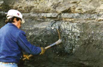 Detalle que muestra una de las capas de carbón sub-bituminoso en el Tajo Rosita, subcuenca de Sabinas. (foto de Piedad-Sánchez 2001).