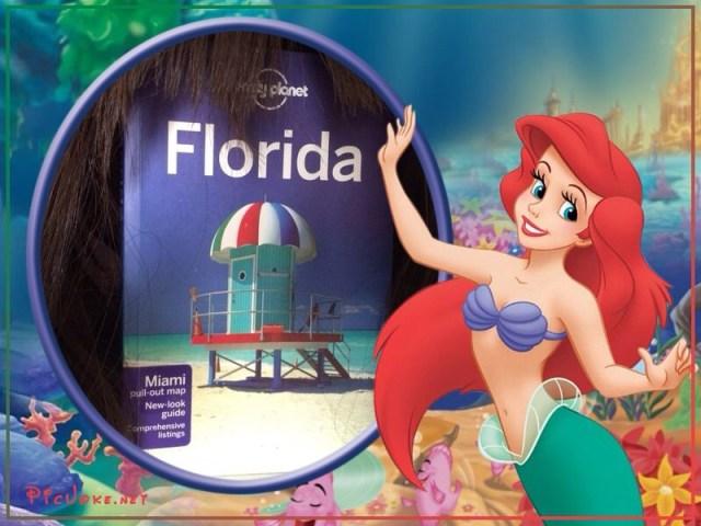 Peruca e Florida