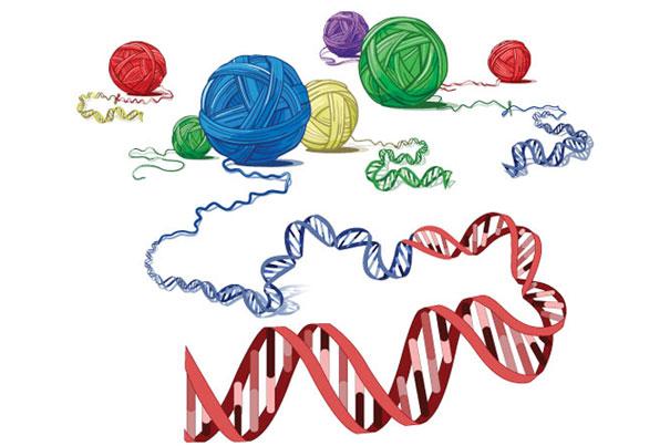 genes cancer