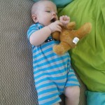 He eats bears!