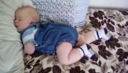 he's comfy, I swear