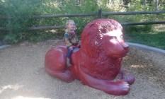 a little lion ride...