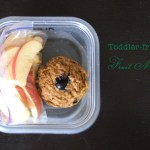 Baby & Toddler-Friendly Fruit Muffins