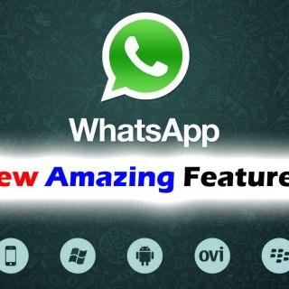 Whatsapp_Logo_01_10.jpg