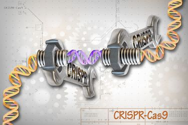 CRISPR-Cas9_Editing_of_the_Genome_(26453307604)