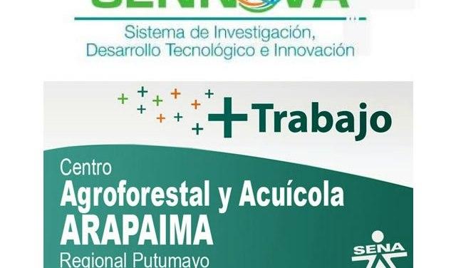 Si hay recursos para apoyar a empresas innovadoras del Putumayo